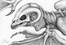 skull dragon|by Etrii