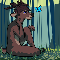 Forest Admiration|by RentonTBuck