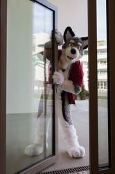may I come in?|by Wulfer