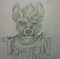 2014 Thorn Badge|by Thorn