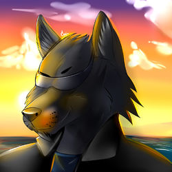 Wow (by FurryTiger_2012)|by Blackwervolk