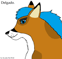 Delgado|by Accalia The Wolf