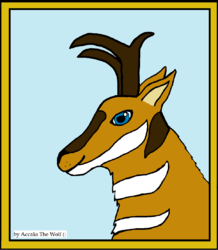 Pronghorn Antelope Commission!|by Accalia The Wolf