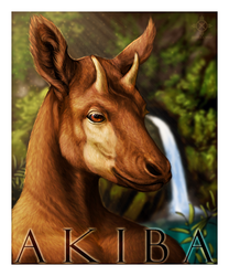 Akiba Badge 2014|by Akiba