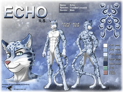 ref199/ Reference: Echo|by darkgoose