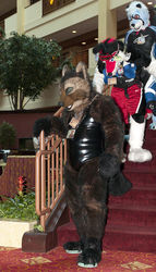 Rcfm 2009 Fursuit Parade 7|by SMWolf