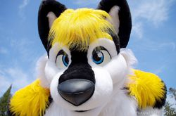 Zeo 2.0 First Photoshooting [11/20]|by ZeoHusky