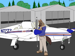 Pre-Flight Inspections|by hyenafur