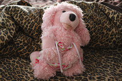 Pink Poodle 6|by Gray Muzzle