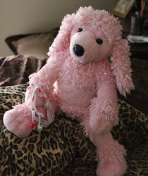 Pink Poodle 11|by Gray Muzzle